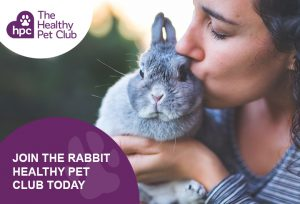 HPC rabbit advert